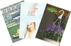 Examples of Full Colour Leaflets